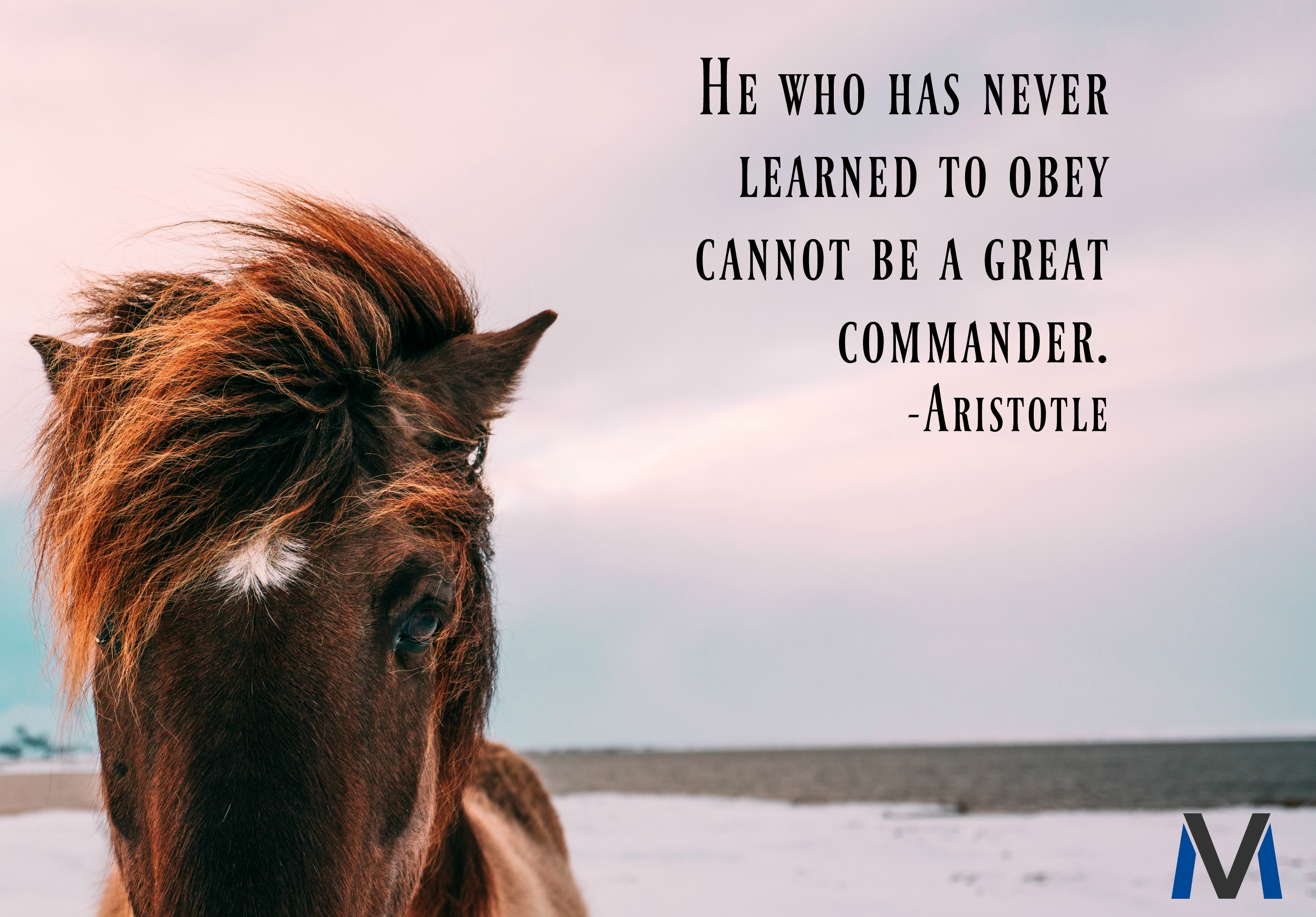aristotle-commander